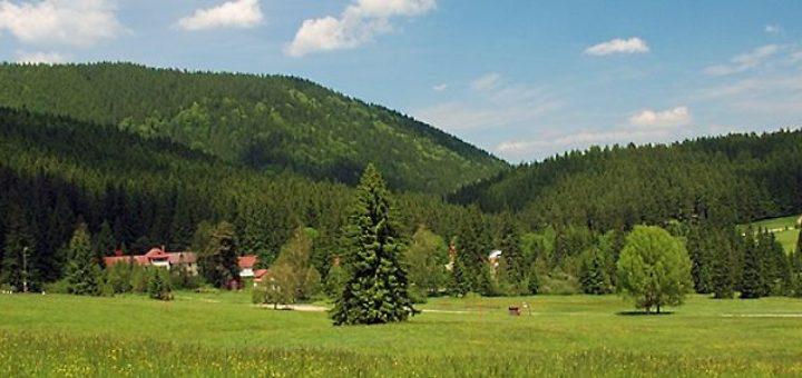 home-main-panorama